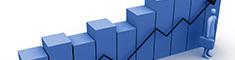 赛尼尔亚搏娱乐入口风险管理行业分析